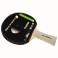 Raquete GAMMA Tenis de mesa Gold Sports