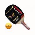 Raquete MINTAKA de Tênis de mesa Gold Sports